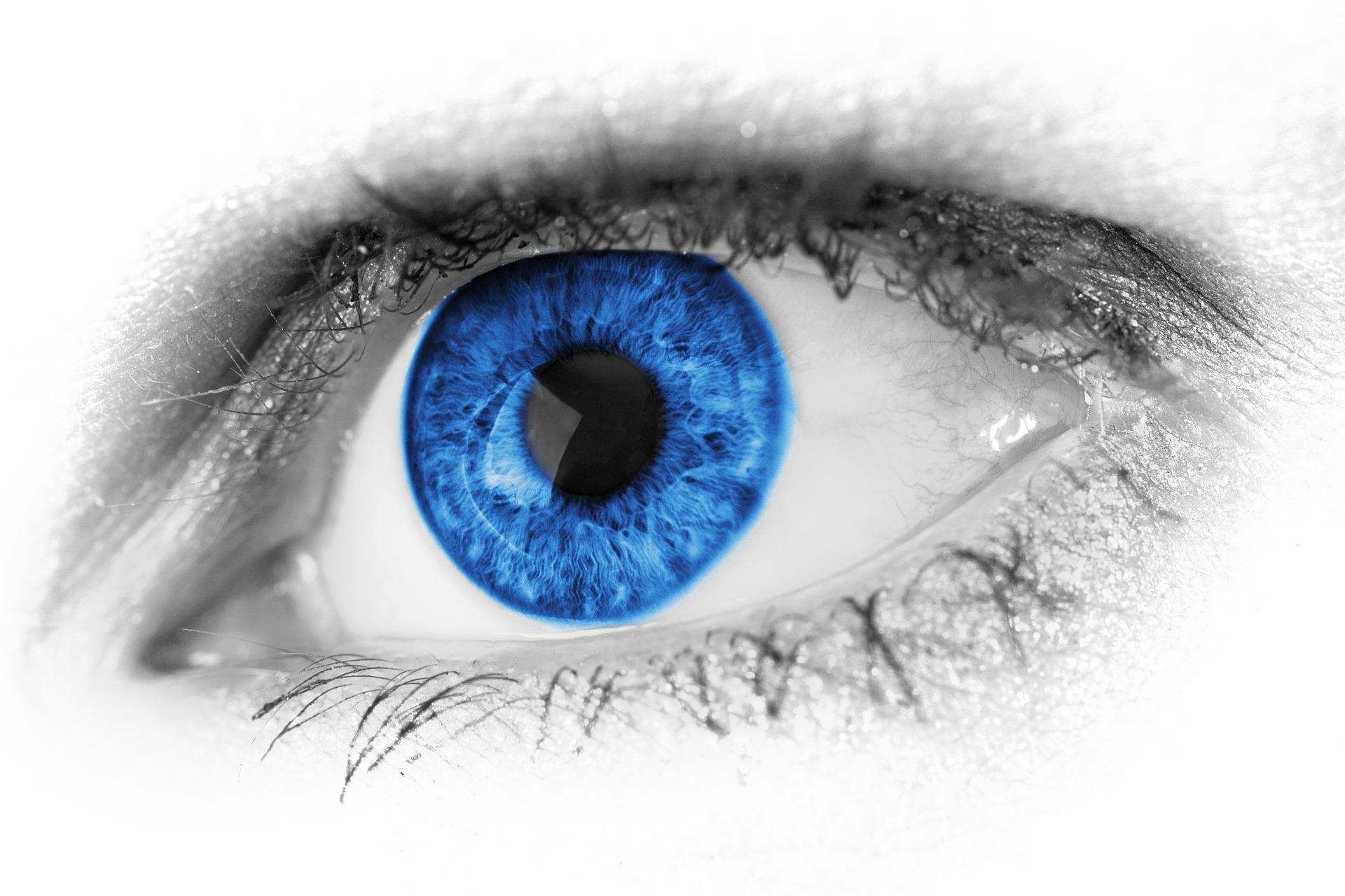 Blue_Eye_Gemahlt
